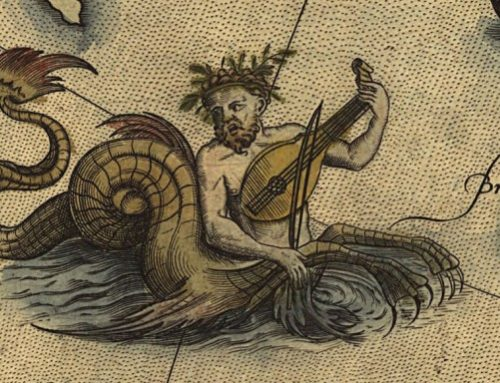 Navegue pela exposição Cinco Pontas e descubra monstros marinhos